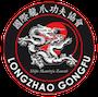 Copia di longzhao 90